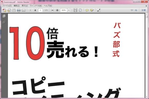 buzzcopy.pdf - Adobe Reader 20120621 234212.jpg