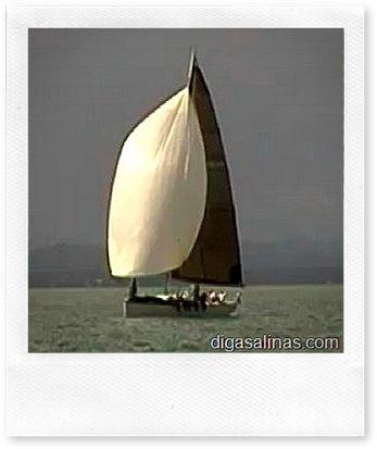 regata salvador-salinas