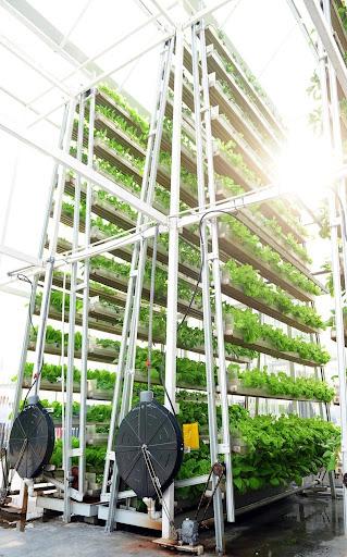 skygreens-vertical-farm-2