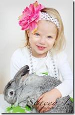 bunny 005 copy