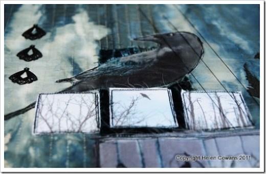 Crow close 3