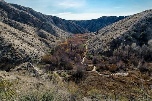 Big Morongo Canyon (22 of 63)