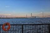 聖地巡礼記事:潮風の消える海に 川崎・国道駅・浅野駅・海芝浦駅 おまけ:猫の写真