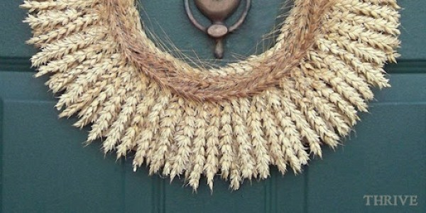 wheat.9b