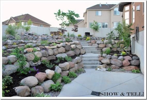 backyard 2011 022