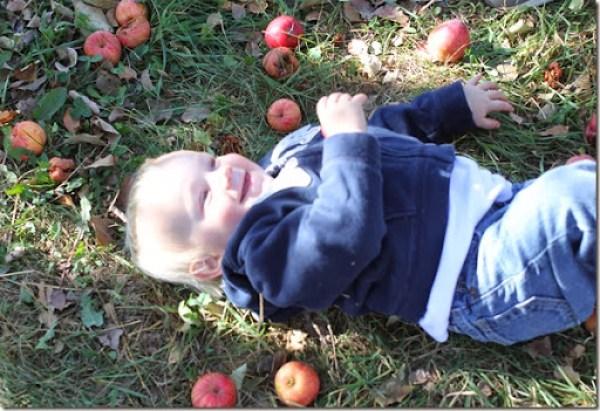 pumpkin patch 2013 117