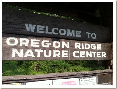 Oregon Ridge park