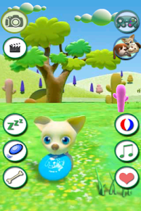Talking Chihuahua Free screenshot 2