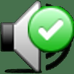 Locale Audio Update Notifier apk