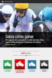 Revista Palermo screenshot 4