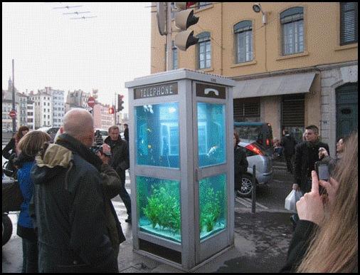aquarium_phone_booth03