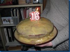 blog photos and happy birthday sick girl 031