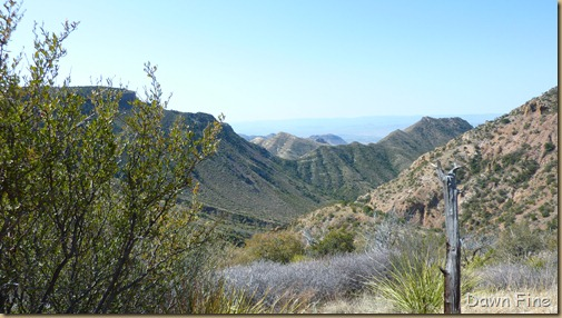 South rim hike,Big bend_022