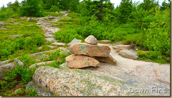 Gorham mt hike_051