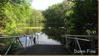 Silver Springs State Park_009
