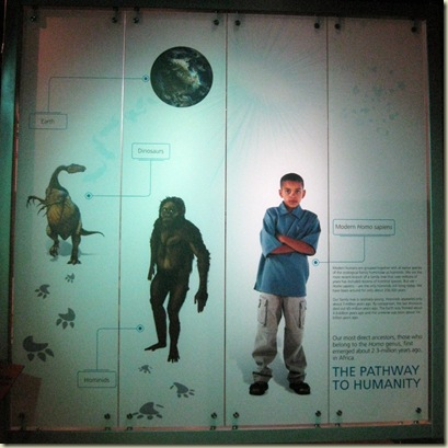 Evolution sign Cradle of Humankind Museum South Africa