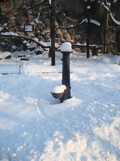 Pompa śnieżna