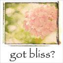 Everyday Bliss