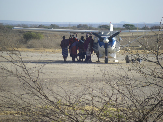 Massai chilling under our wing