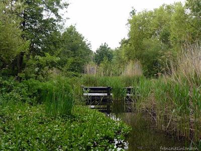 Sortir à Londres : Parcs et espaces verts 1
