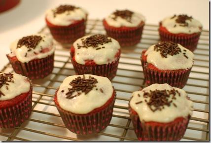 cupcakes 013