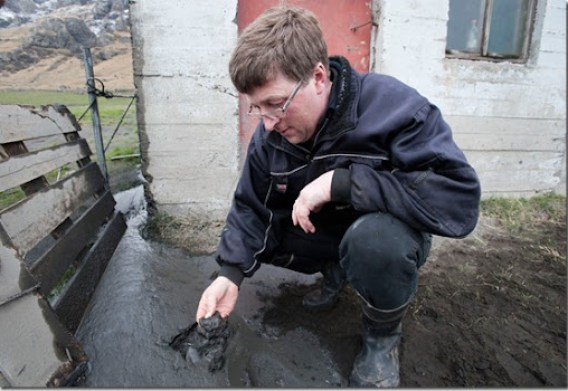 A farmer checks muddy volcanic ash on his land in Iceland on April 18, 2010. (HALLDOR KOLBEINS/AFP/Getty Images) #