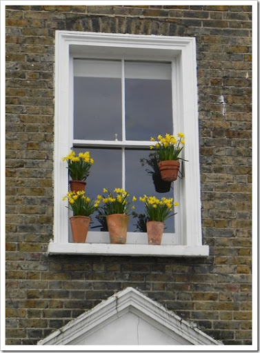Columbia Road - Window