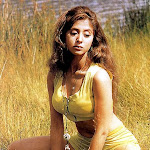 Bollywood glamour actress urmila photo gallery   part 8