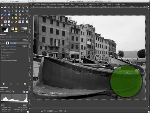 vernazza-green.jpg
