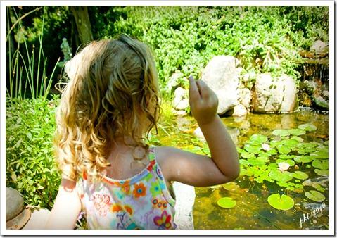 DSC_0091-Kaylin-feeding-fish