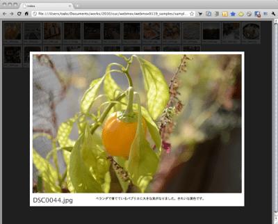screen(2011-01-19 7.06.30).png