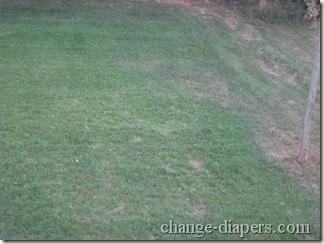 grass sept 8