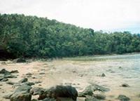 tubay, agusan del norte