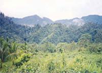 santiago tubay ridge, agusan del norte