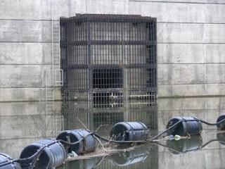 ダム湖より放流口を望む