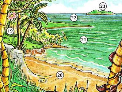 THE%20ENVIRONMENT%20AND%20ENERGY 7 Environment, Energy place english through pictures english through pictures
