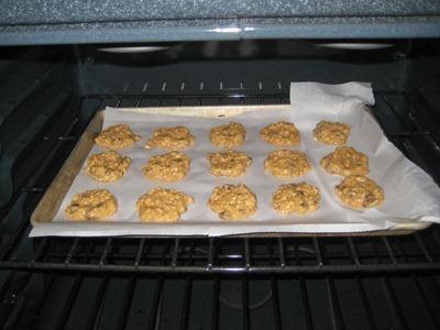 cookie 025