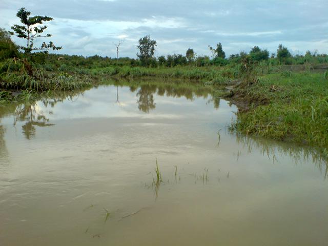 Sungai Plape
