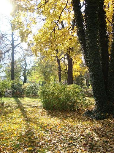 Jesień w Starym Zoo!