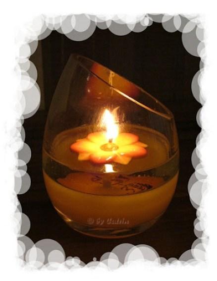 Feuerblume (3)