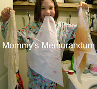 Laundry Lab: Which Laundry Detergent Works Best?
