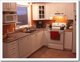 Bi0nic Kitchen 003