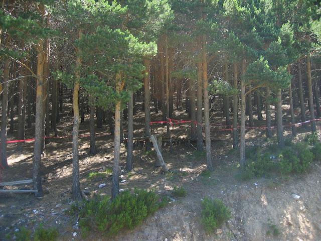 Pasarela de madera por una pista Roja