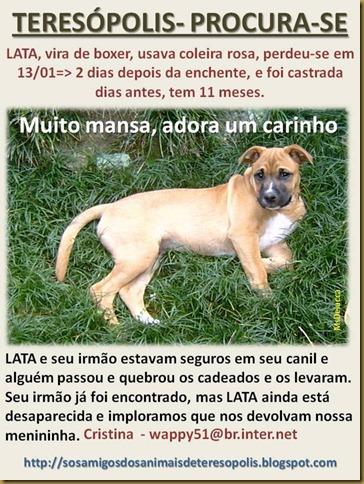 lata_procurase