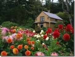 floweryard