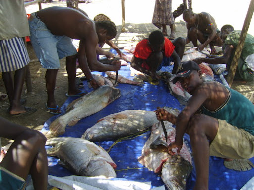 Fishing Industry on Lake Turkana