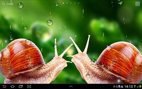 Rain Live Wallpaper Apps on Google Play