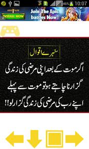 Sunehray Iqwal screenshot 2