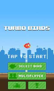 Turbo Birds: Fun Race screenshot 5