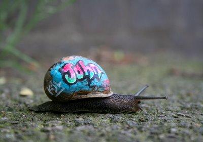 snail+graf+1+-+blog.jpg